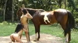 Симпатичные девушки без одежды играют с конским хуем видео онлайн зоо