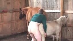 Horse zoo деревенский зоофил ебет пони с особой нежностью