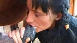 Porn horse женщина с косичками ест конячью малофью zoo с конем